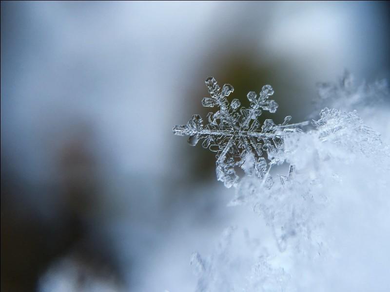 En Sibérie, la température moyenne __ de -40 degrés.