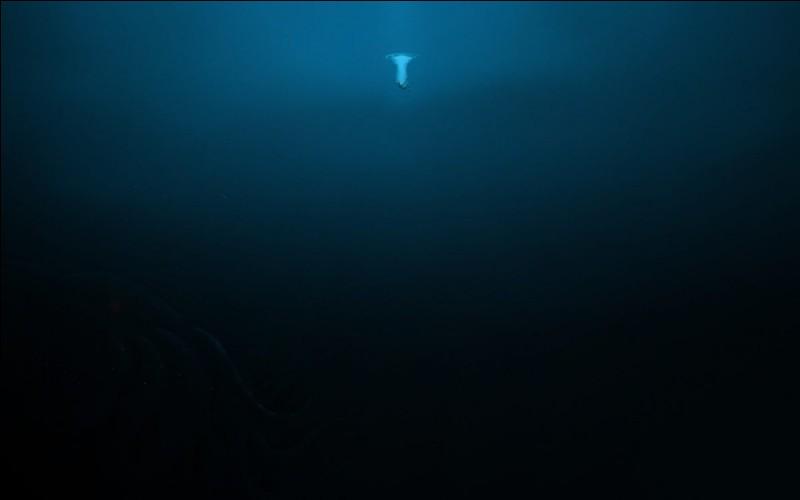 Jacques Picard __ Don Waltz sont descendus tout au fond de l'océan à une profondeur de 11 kilomètres __ cela se passa en 1960.