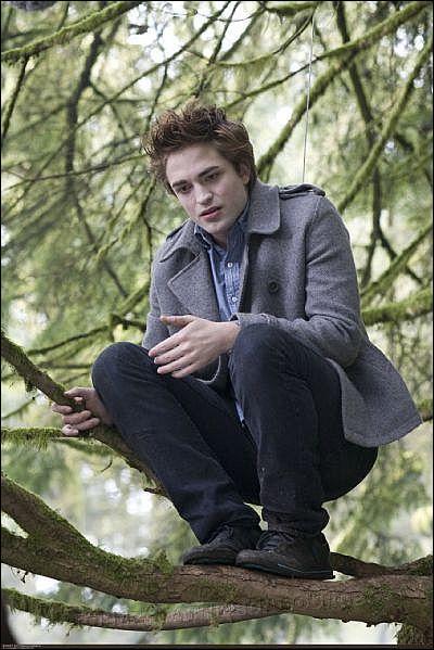 Twilight: Quel est le nom complet d'Edward ?
