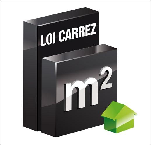 En quelle année la fameuse Loi Carrez, que l'on entend souvent de la bouche des agents immobiliers, fut créée ?