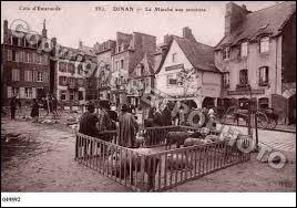 À Dinan (Côtes-d'Armor), les habitants portent le gentilé ...