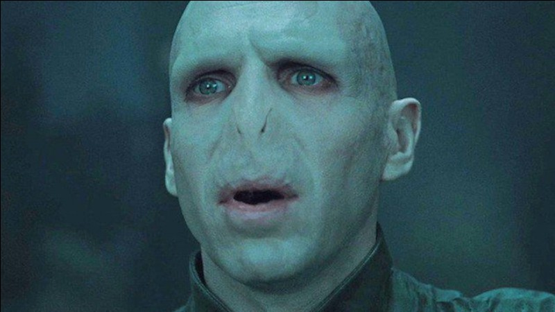 Voldemort est l'ennemi de l'histoire.