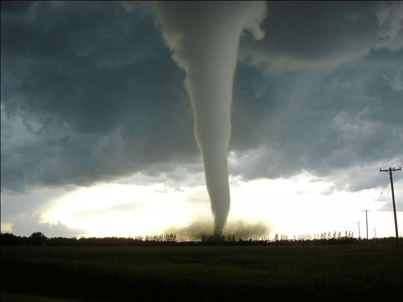Comment nomme-t-on les personnes qui chassent les tornades ?