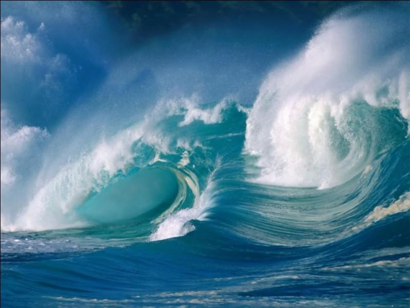 Comment nomme-t-on une vague qui se transforme en un rouleau en surface généralement accompagné d'écume ?