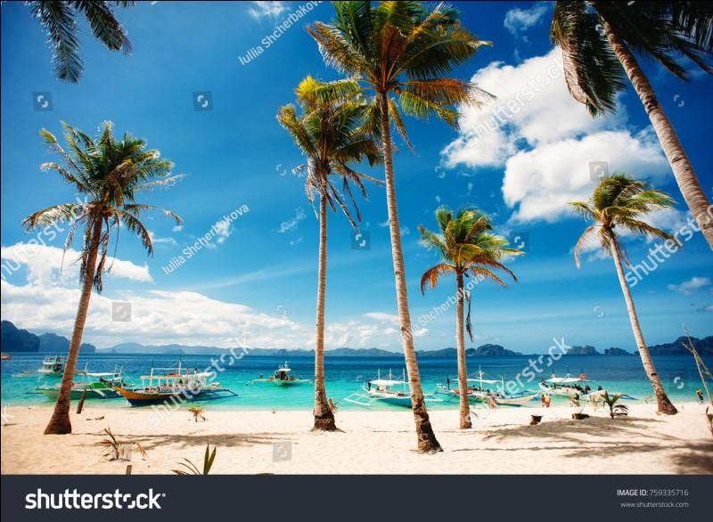 Les Philippines comptent [ ... ] îles.