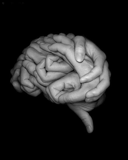 Combien pèse en moyenne un cerveau humain ?