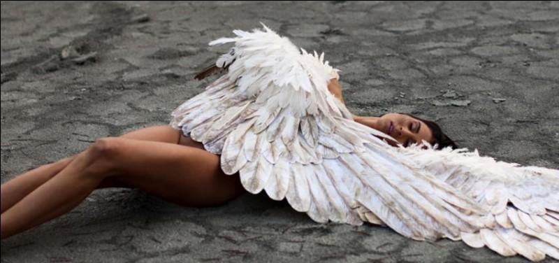 Une des compagnes inséparable de Zeus, déesse de la victoire. Qui est-elle ?