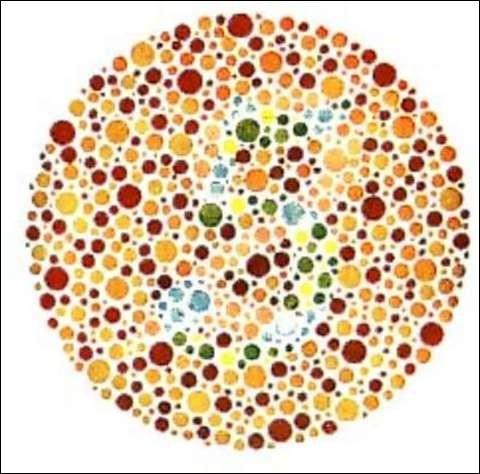 Que vois-tu ?