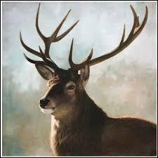 Comment appelle-t-on le bruit qu'émet le cerf ? (3 réponses possibles)