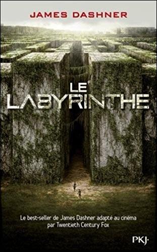 """Qui est le héros ou l'héroïne de la saga """"Le Labyrinthe"""" ?"""