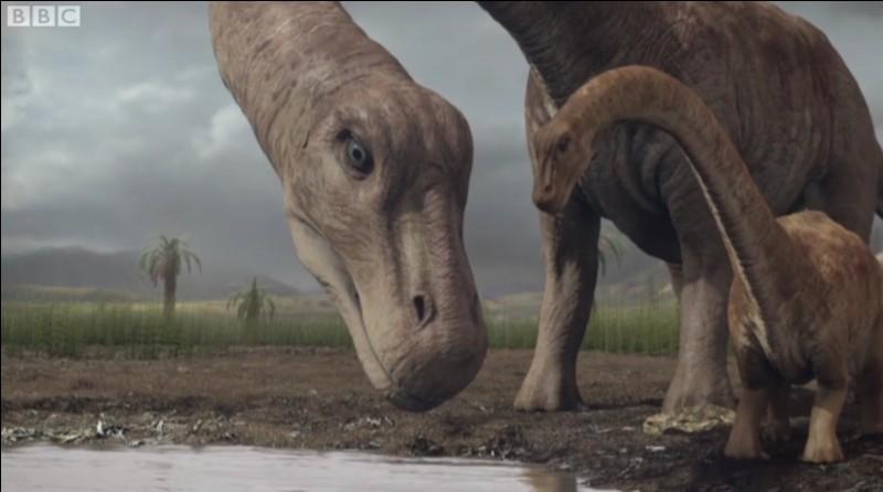 Quel est le plus petit sauropode ?