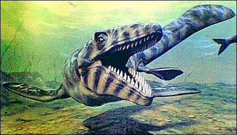 Mosasaure mesurait :