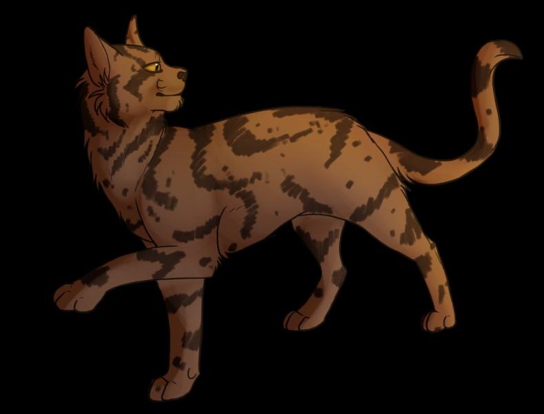 Le nom de chaton d'Étoile Solitaire est...