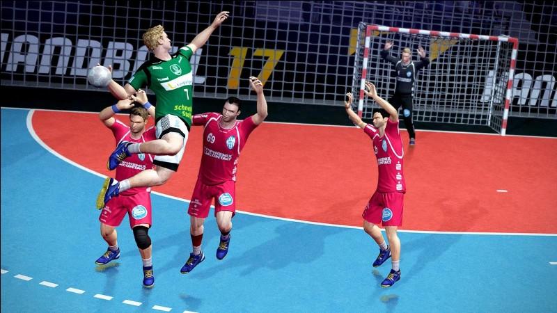Le Championnat du monde de handball masculin 2017 a été remporté par la France.