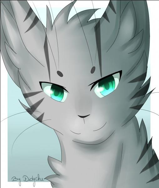 Qui est-ce ?(Il ou elle a les yeux bleus.)