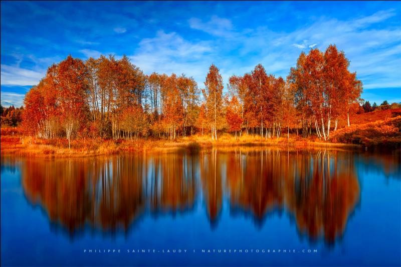 Quel paysage aimes-tu le plus ?