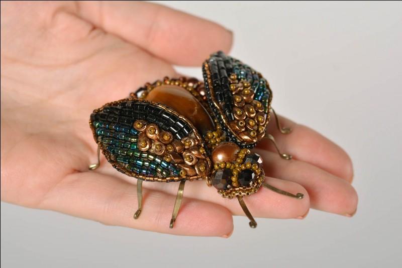 Aimes-tu sauver des insectes ?