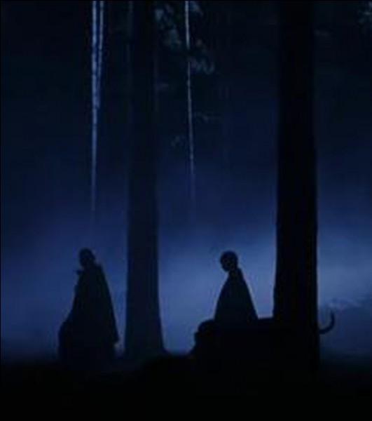 On te dit que tu n'es pas capable d'aller dans la Forêt interdite cette nuit.