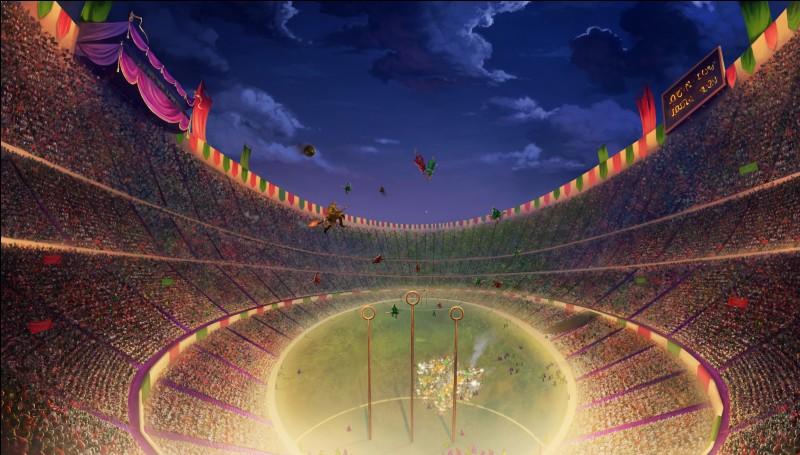 Bon. C'est le match de Quidditch...