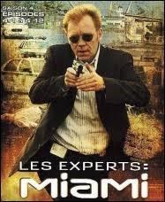 David Caruso, dans le rôle d'Horatio Caine, connaît bien son affaire. Vous ne lui apprendrez rien car c'est un ''Expert'', comme...