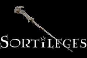 Connais-tu bien les sortilèges de Harry Potter ?