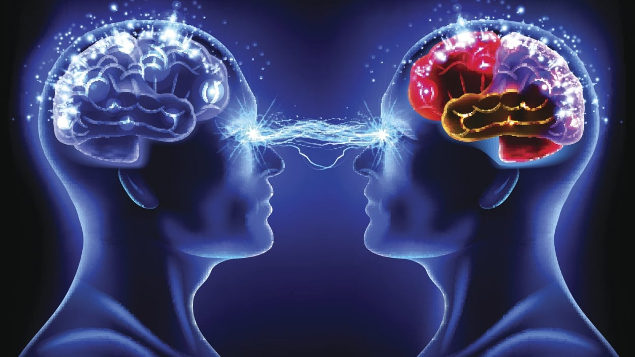 Bataille des cerveaux