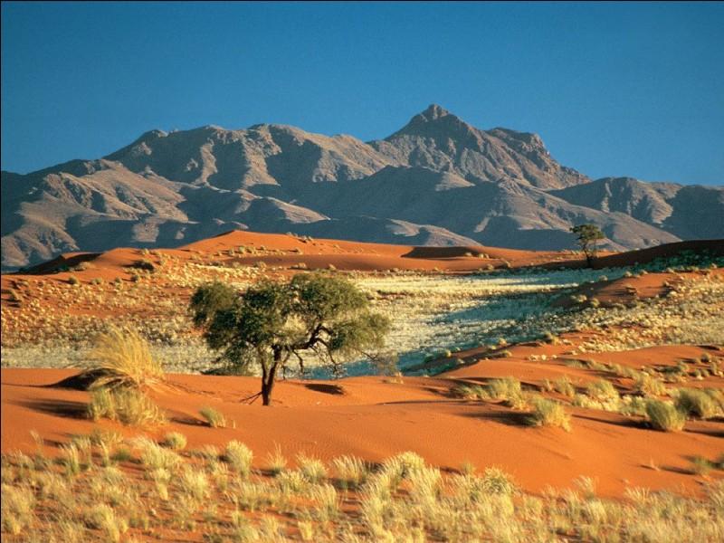 """Quel désert surnomme-t-on parfois """"enfer du diable"""" ou """"territoire de la mort"""" ?"""