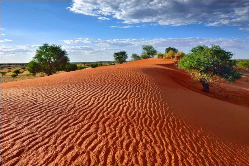 Laquelle de ces affirmations se réalise sur le désert du Kalahari ?