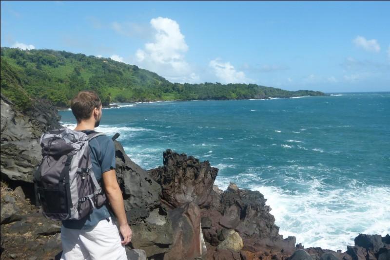"""Qui chante : """"C'est pas l'homme qui prend la mer, c'est la mer qui prend l'homme"""" ?"""