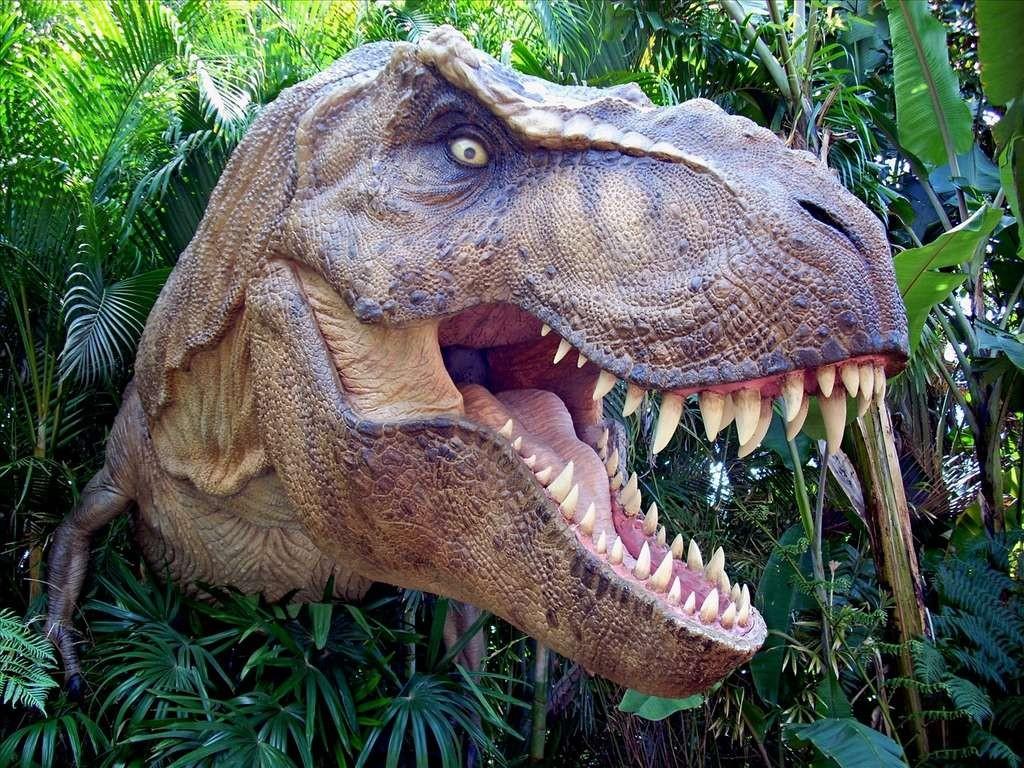 Sais-tu reconnaître un dinosaure ?