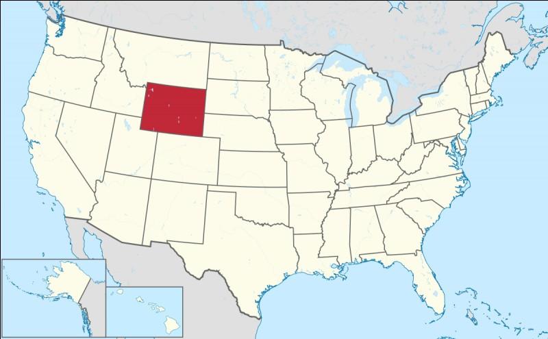W : Le Wyoming est un État situé aux USA.