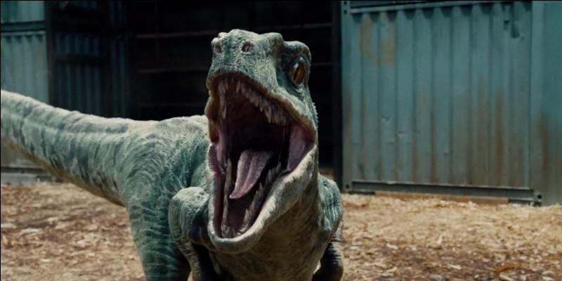 Quel dinosaure est dressé par Owen Grady ?
