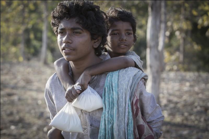 Lequel de ces films raconte l'histoire d'un jeune indien perdu ?