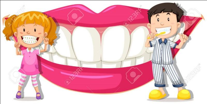 Quelles sont les dents les plus longues chez les vampires ?
