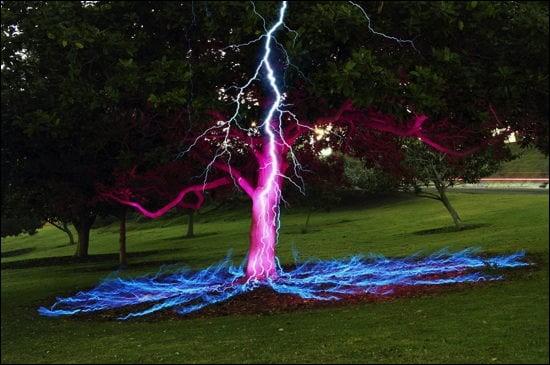 Cette photo représente un éclair ayant eu un... coup de foudre pour un arbre ! À votre avis, la foudre a-t-elle vraiment touché cet arbre ?