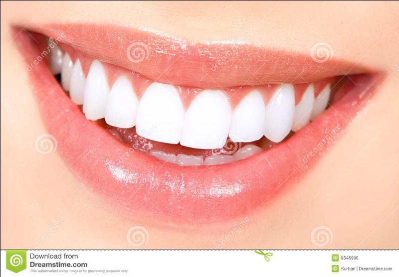 Aimes-tu avoir une dentition parfaite ?