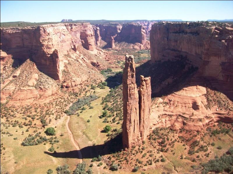 Voici une superbe vue plongeante sur le Grand Canyon.