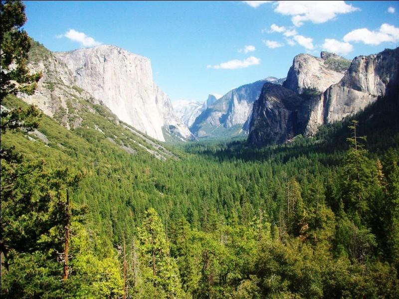 Toujours en Californie, voici le Parc National de Yosemite.