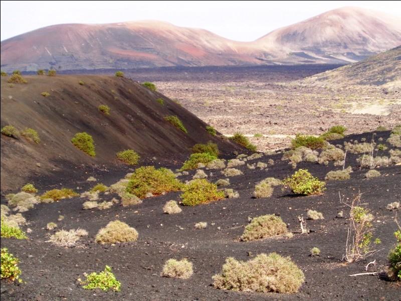 Voici à quoi ressemble l'intérieur des terres en Islande.