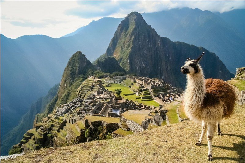 Quelle chaîne de montagnes s'étend le long de la côte ouest de l'Amérique du Sud ?