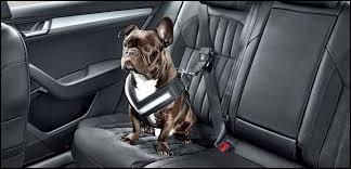 Le port de la ceinture de sécurité à l'arrière est obligatoire depuis ...