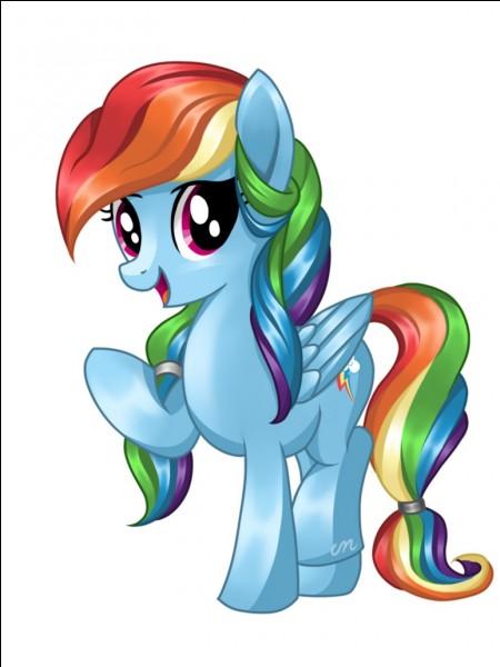Quel est le plus grand défaut de Rainbow Dash ?