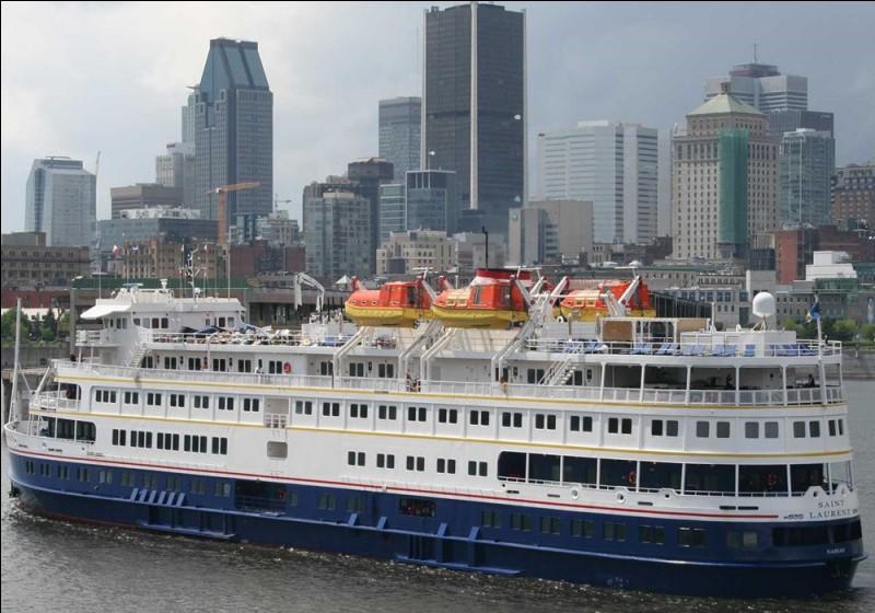 Découvrir l'est américain à partir de Chicago, naviguer au milieu des mille îles du lac Huron, arrêt à Détroit au Musée Ford puis, admirez les Chutes du Niagara. Toronto sera notre port d'arrivée.