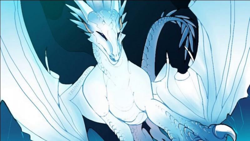 Qui sont les dragonnets du destin ?