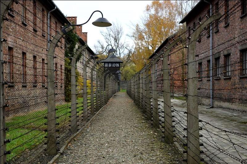 Quand le camp d'Auschwitz est-il libéré ?