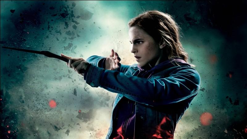À quoi ressemble l'Épouvantard d'Hermione ?