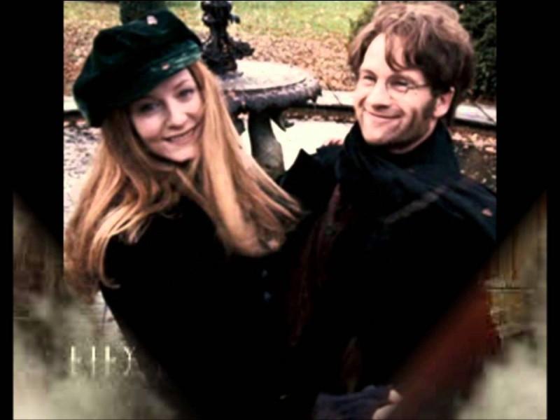 En quelle année meurent James et Lily Potter ?