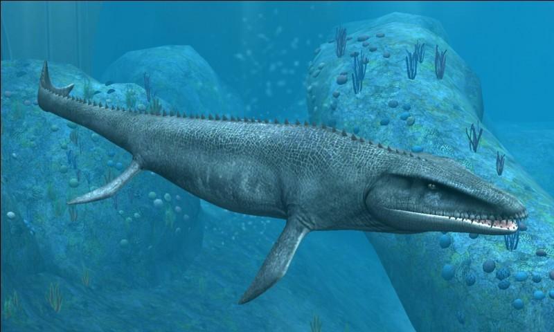 Créatures marines préhistoriques