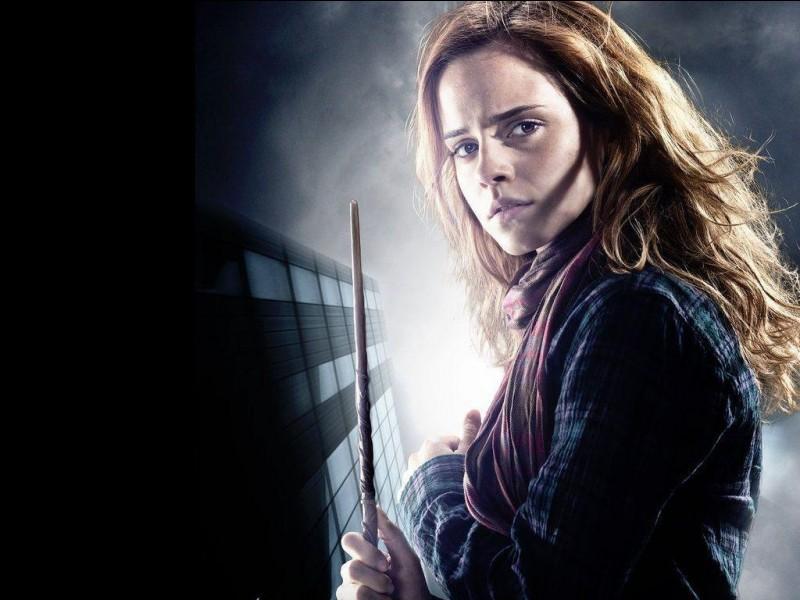 Qu'est-ce qu'il y a dans la baguette d'Hermione Granger ?