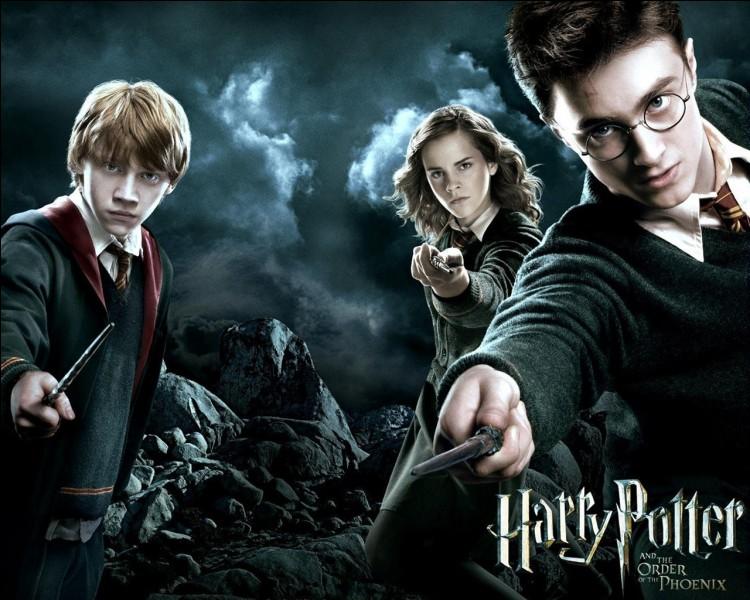 """H. Quels personnages existent dans """"Harry Potter"""" ?"""